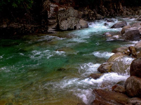 信州での渓流釣り